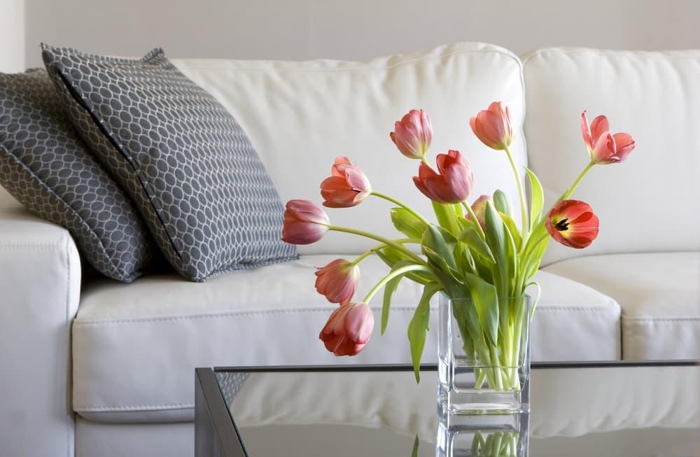 Why should I keep my home clean