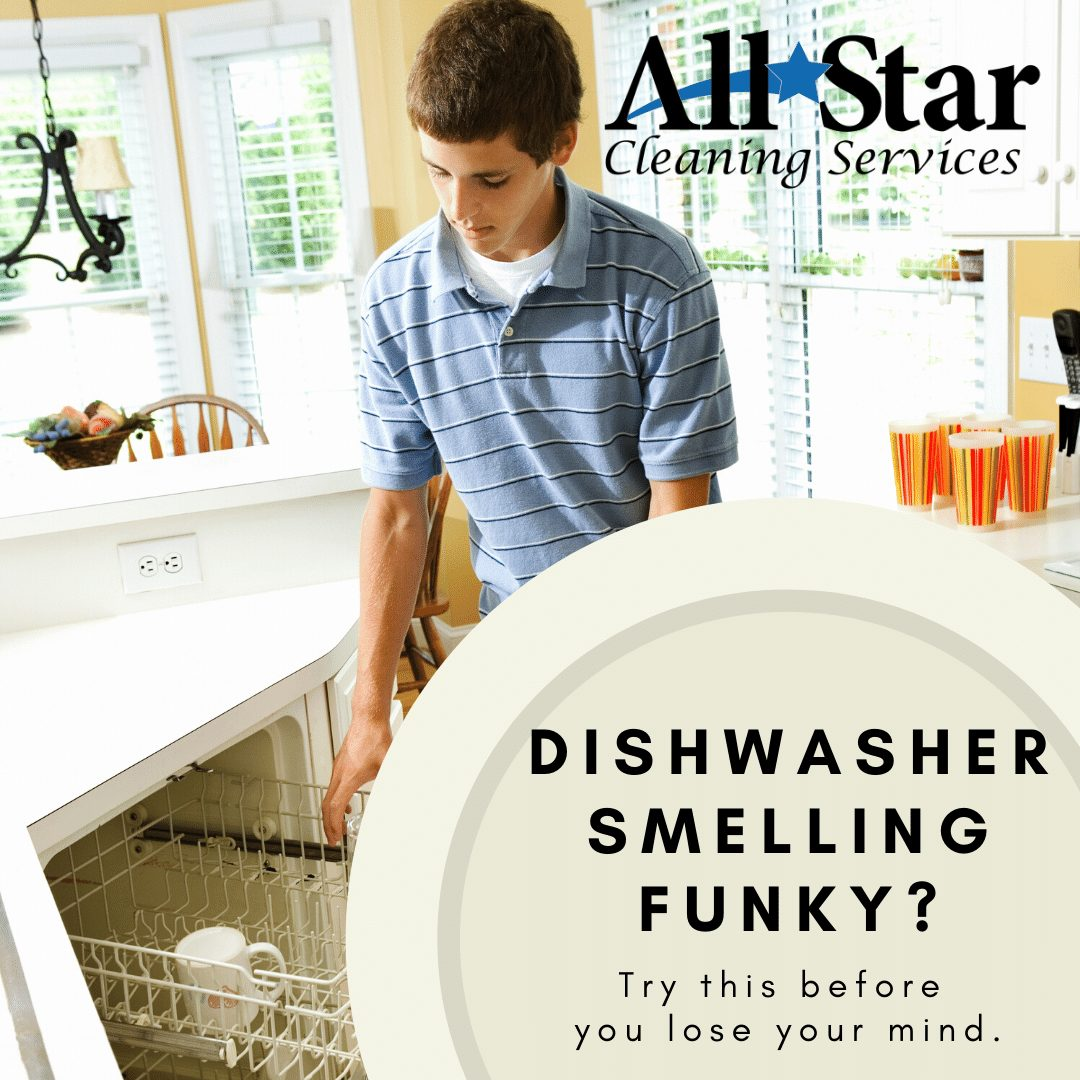 Dishwasher Smelling Funky?